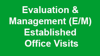 evaluation and management cpt codes pdf