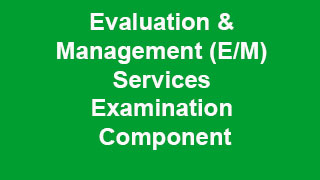 Evaluation and Management Services Examination Component